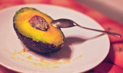 Avocado Download