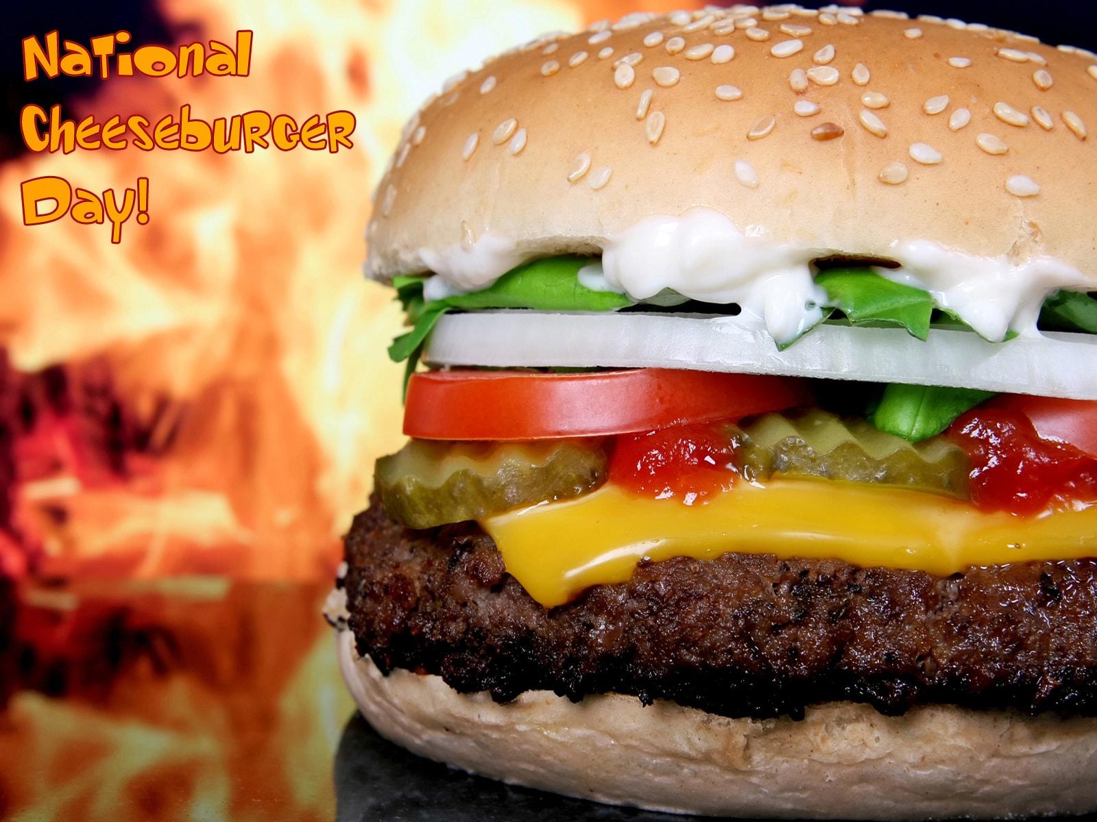 Cheeseburger Download