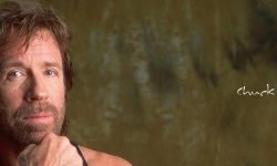 Chuck Norris Download