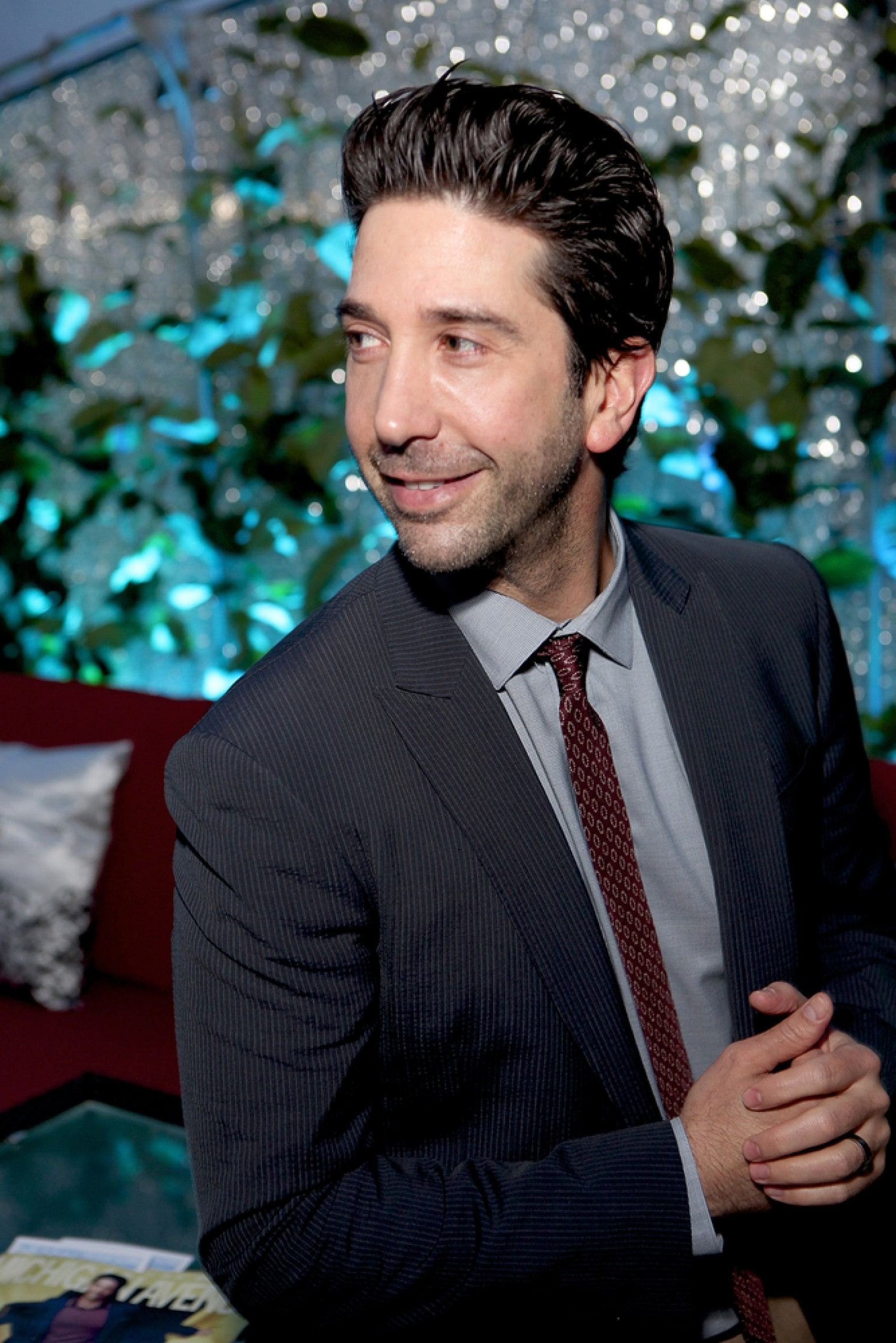 David Schwimmer Download