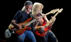 Deep Purple Free