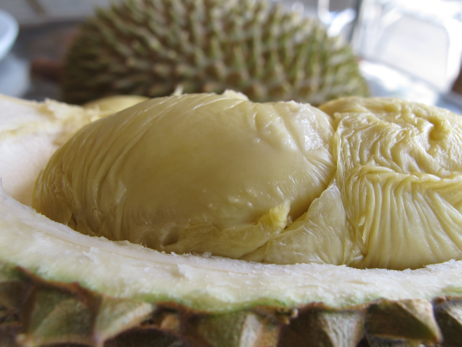Durian Download