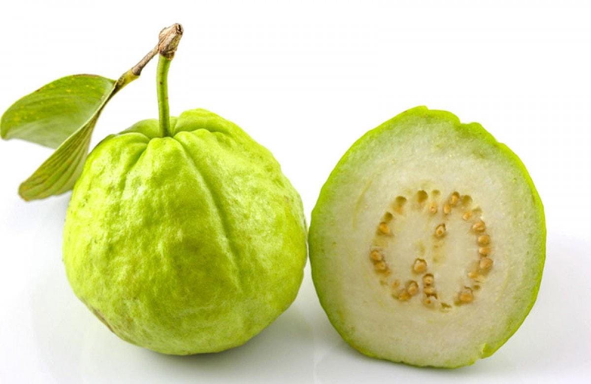 Guava Free
