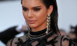 Kendall Jenner Widescreen
