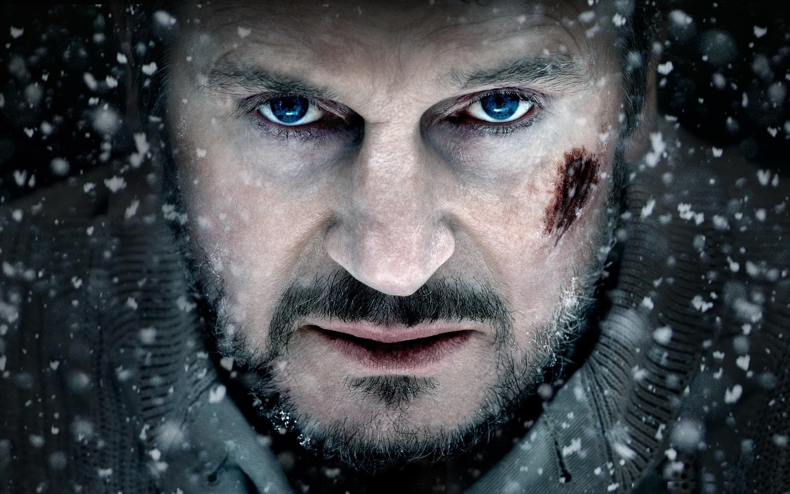 Liam Neeson Download