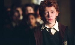 Rupert Grint Download