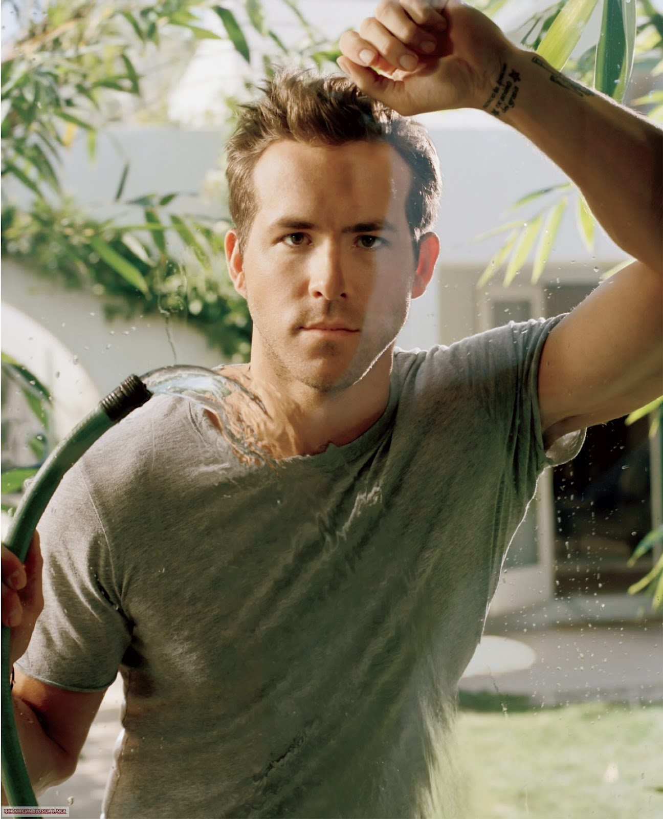 Ryan Reynolds Download