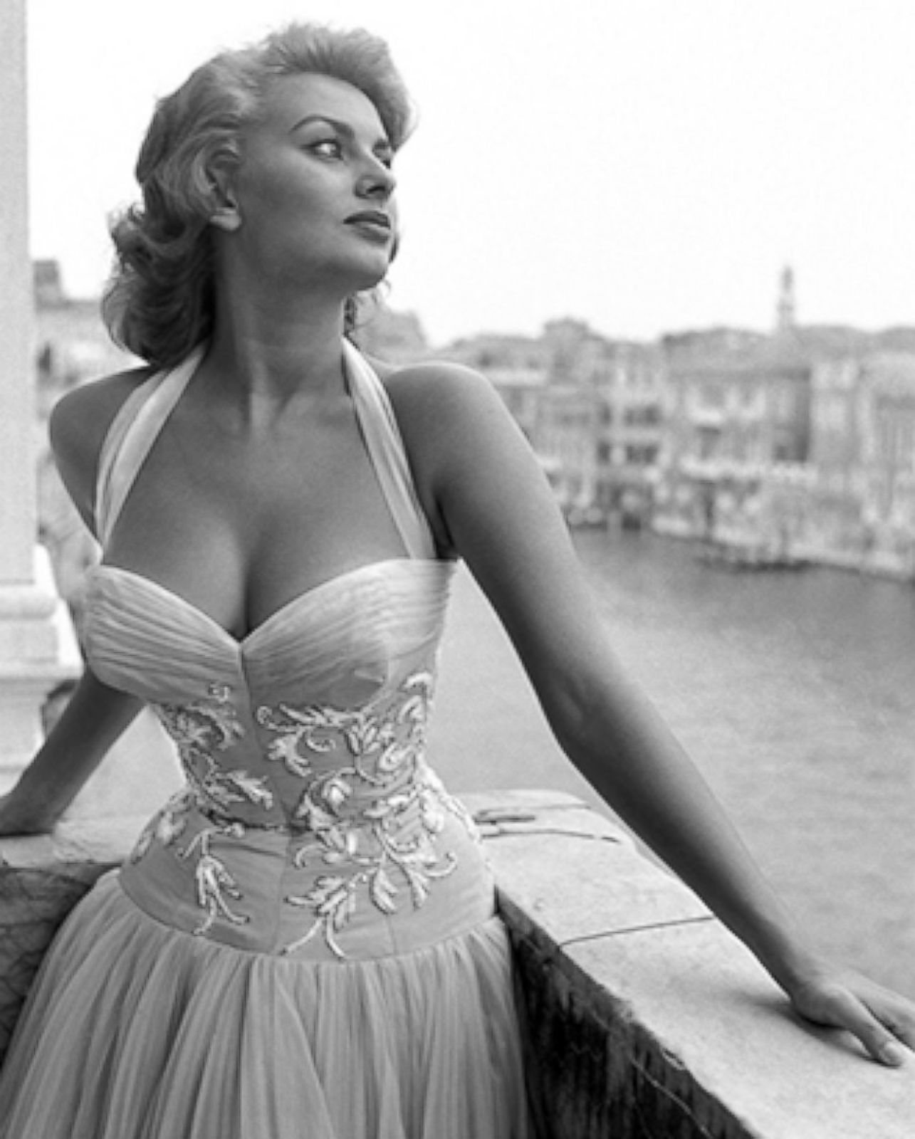 Sophia Loren Download