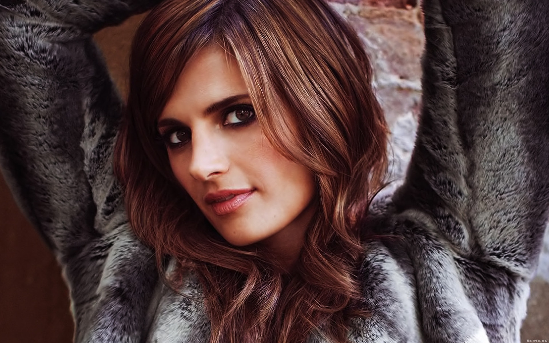 Stana Katic Download