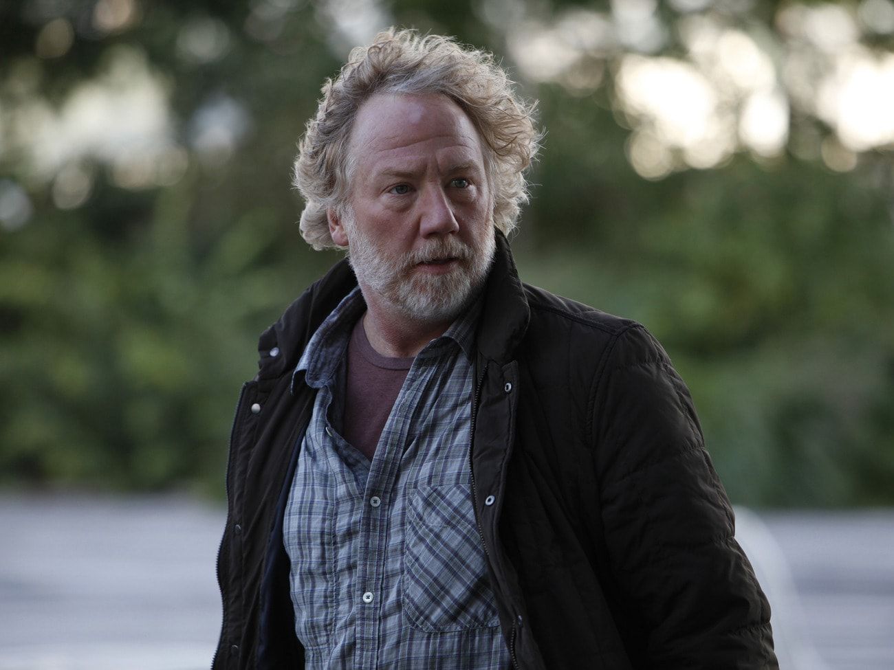 Timothy Busfield Download