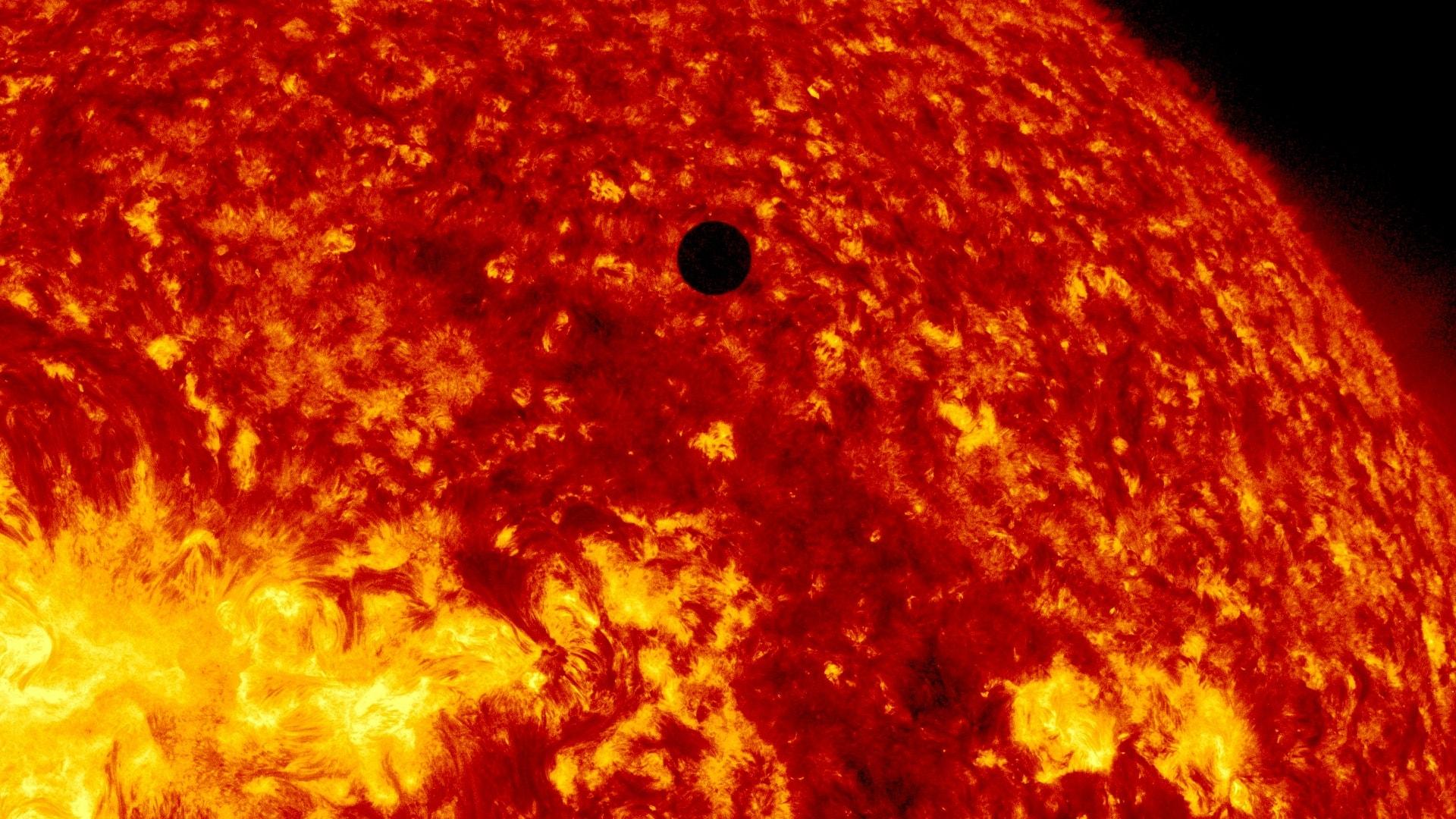 Venus Download