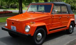 Volkswagen 181 Download