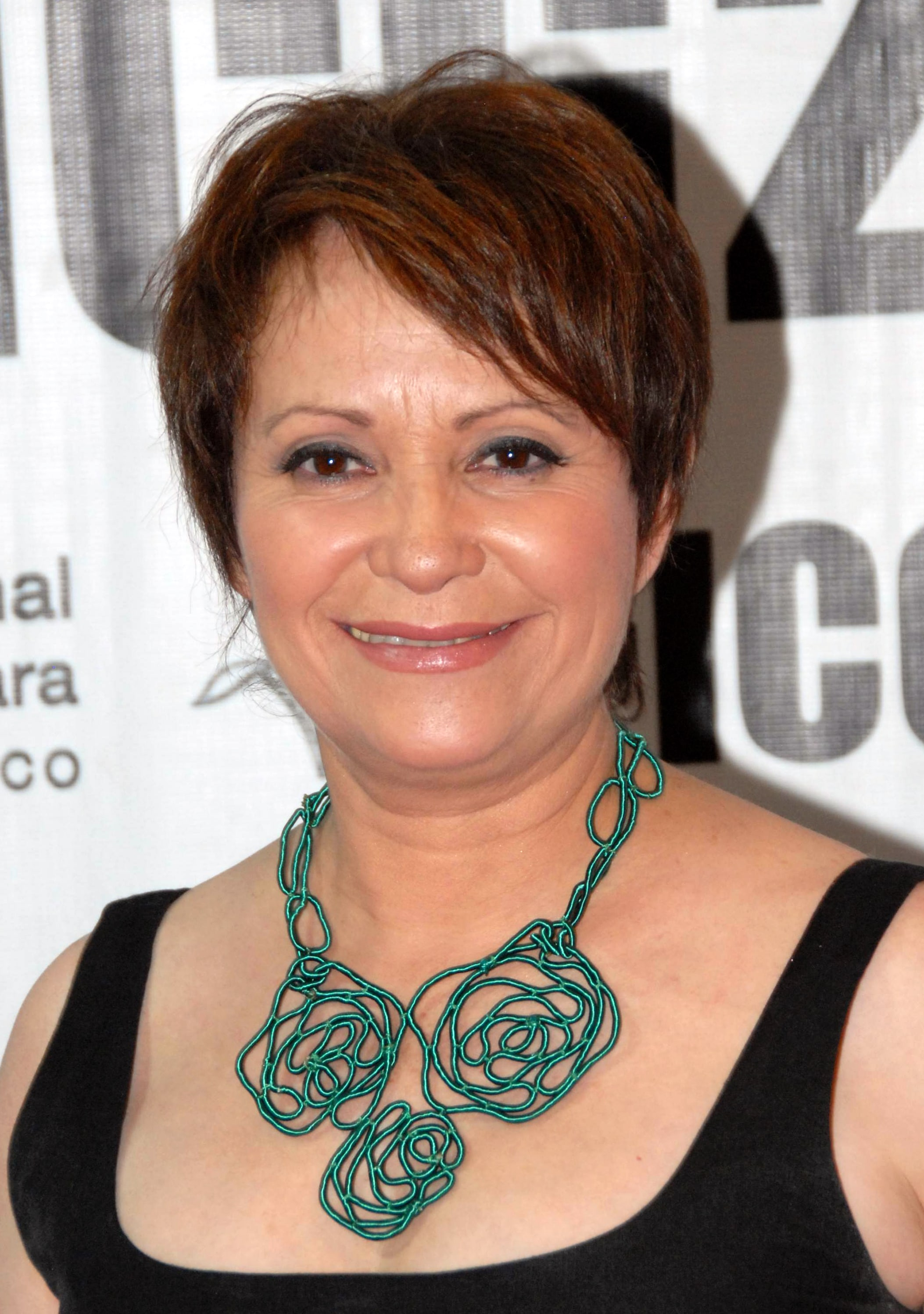 Adriana Barraza Wallpapers
