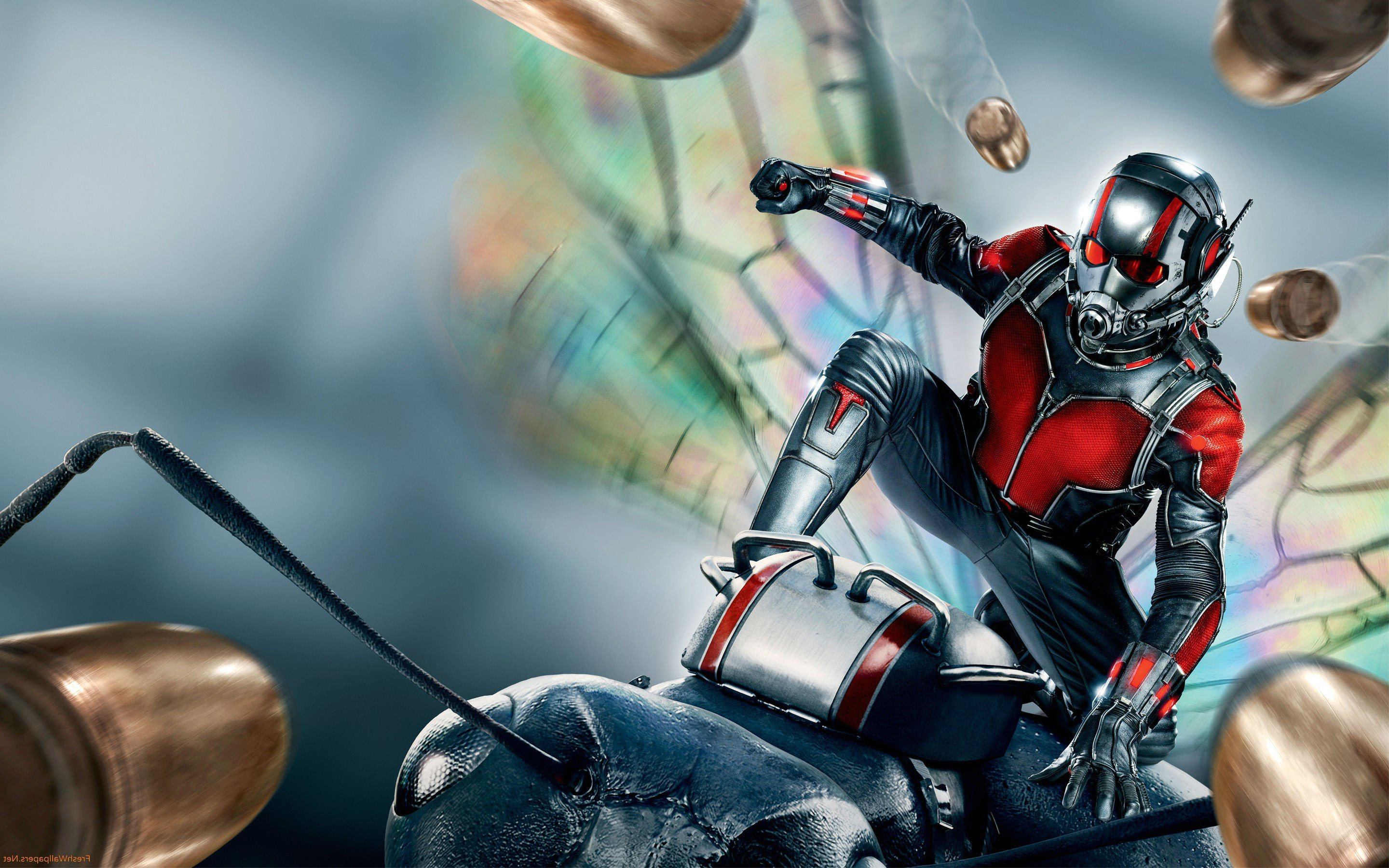 ant man movie wallpapers - photo #1