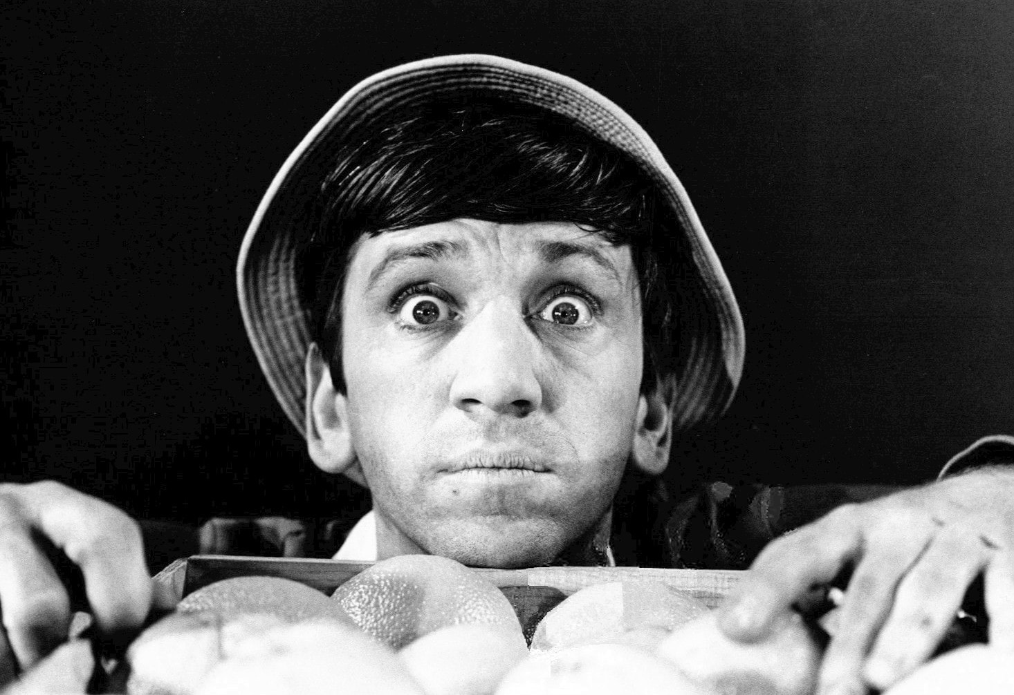Bob Denver Wallpapers