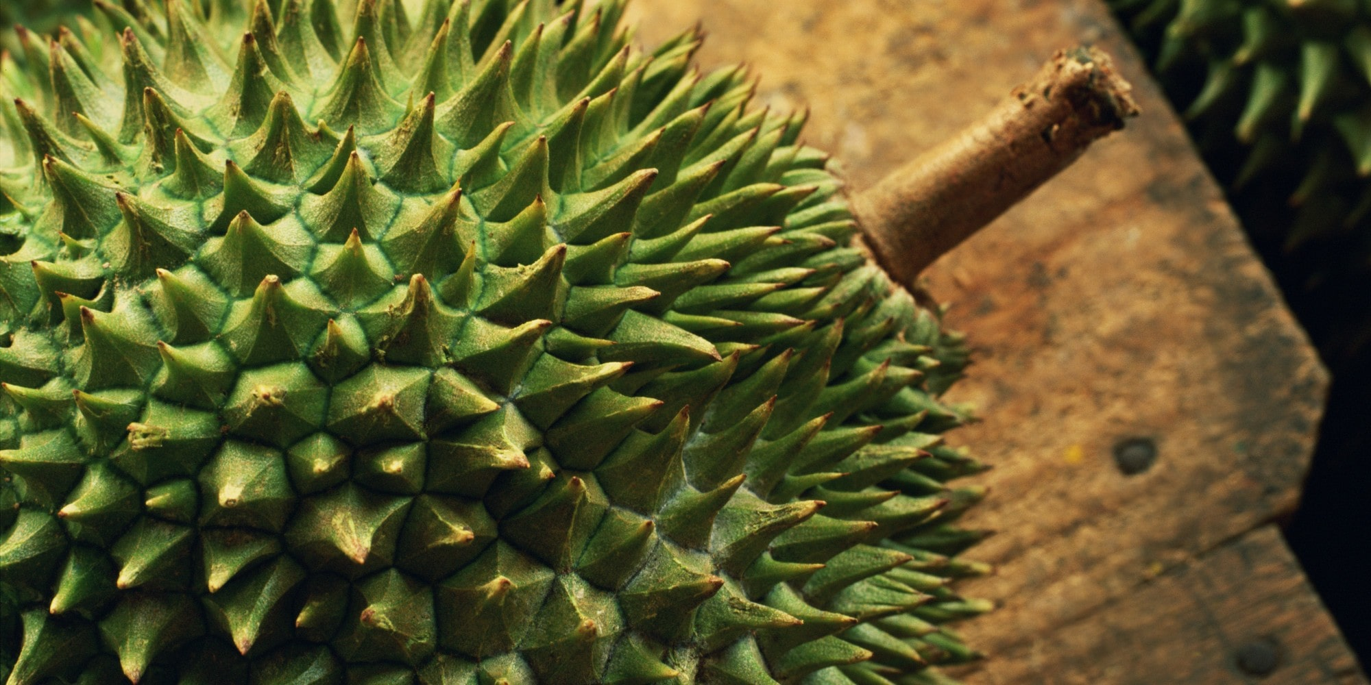 Durian Wallpapers