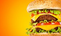 Hamburger Wallpapers