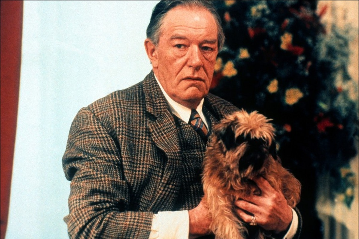 Michael Gambon Wallpapers