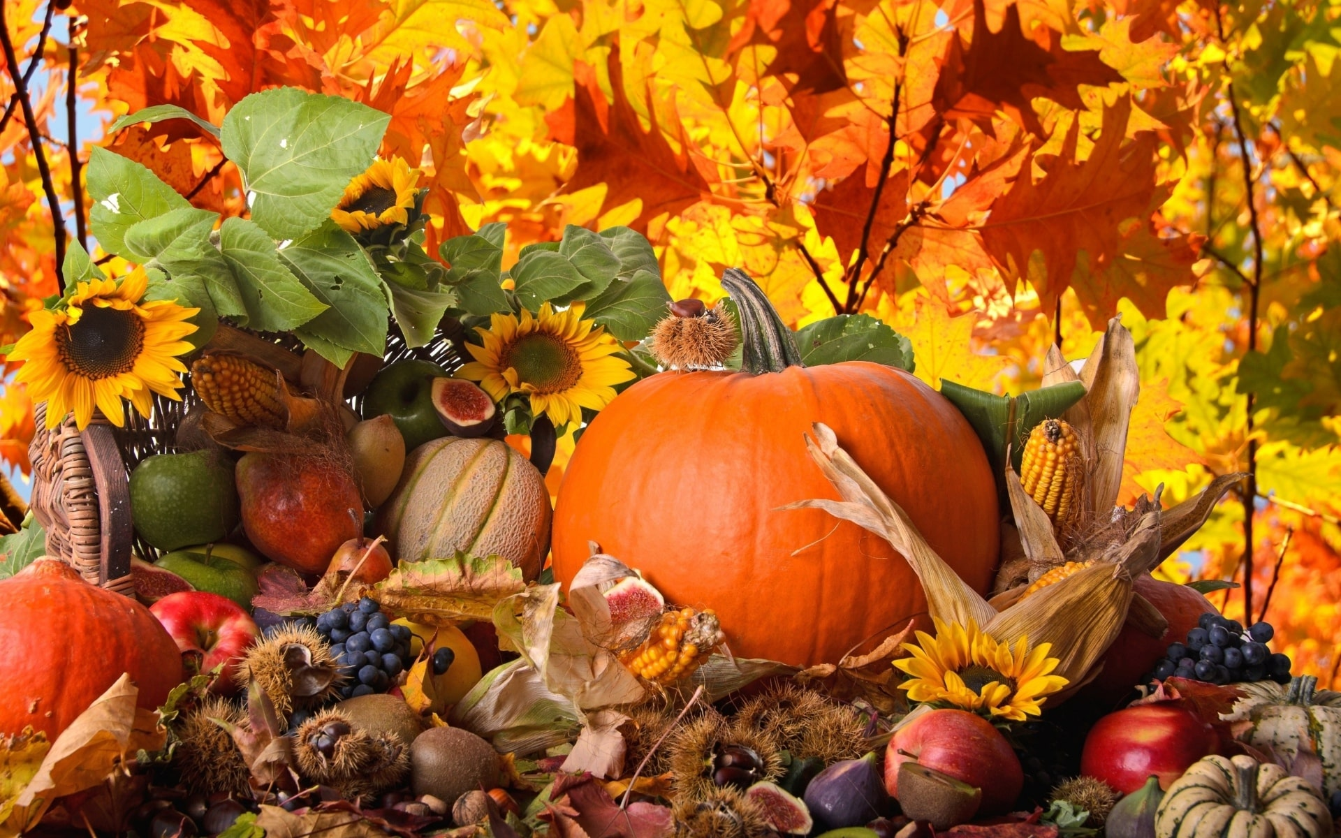 thanksgiving wallpapers for windows 7 - photo #43