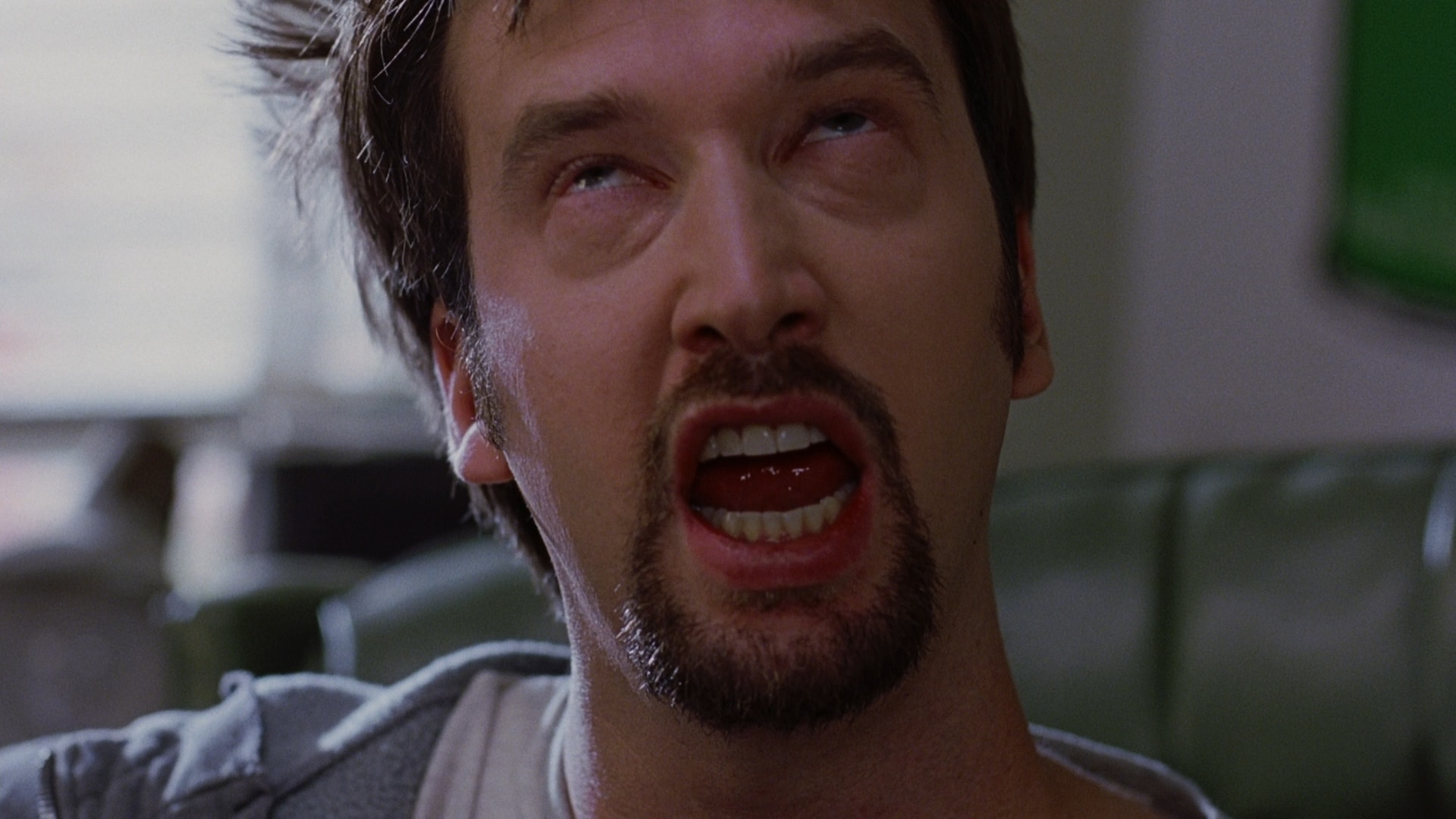 Tom Green Wallpapers