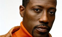 Wesley Snipes Wallpapers