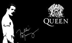Freddie Mercury desktop wallpaper