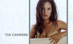 Tia Carrere widescreen wallpapers