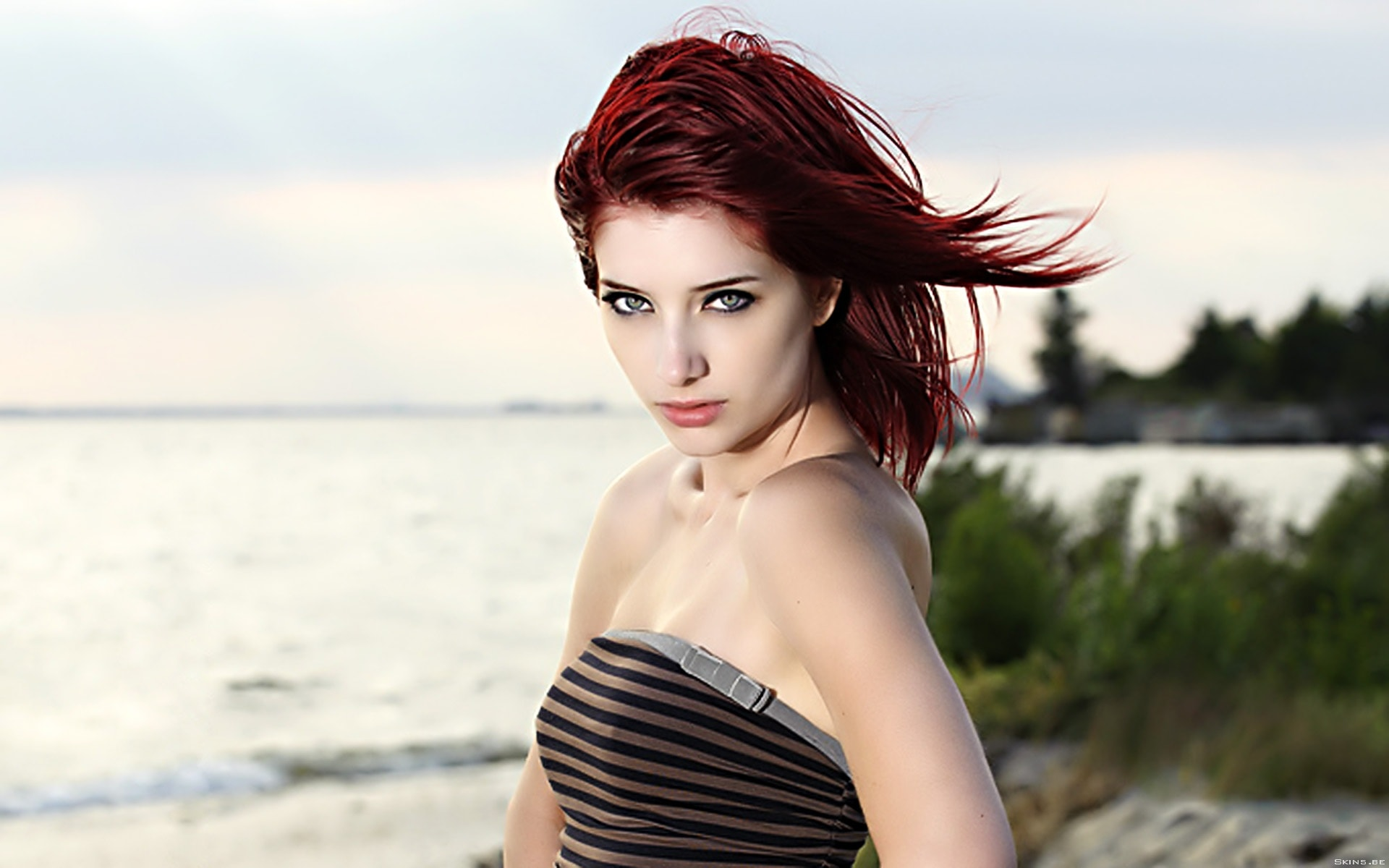 Susan Coffey widescreen for desktop