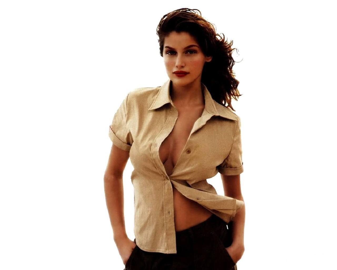 Laetitia Casta Wide wallpapers
