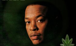 Dr. Dre High
