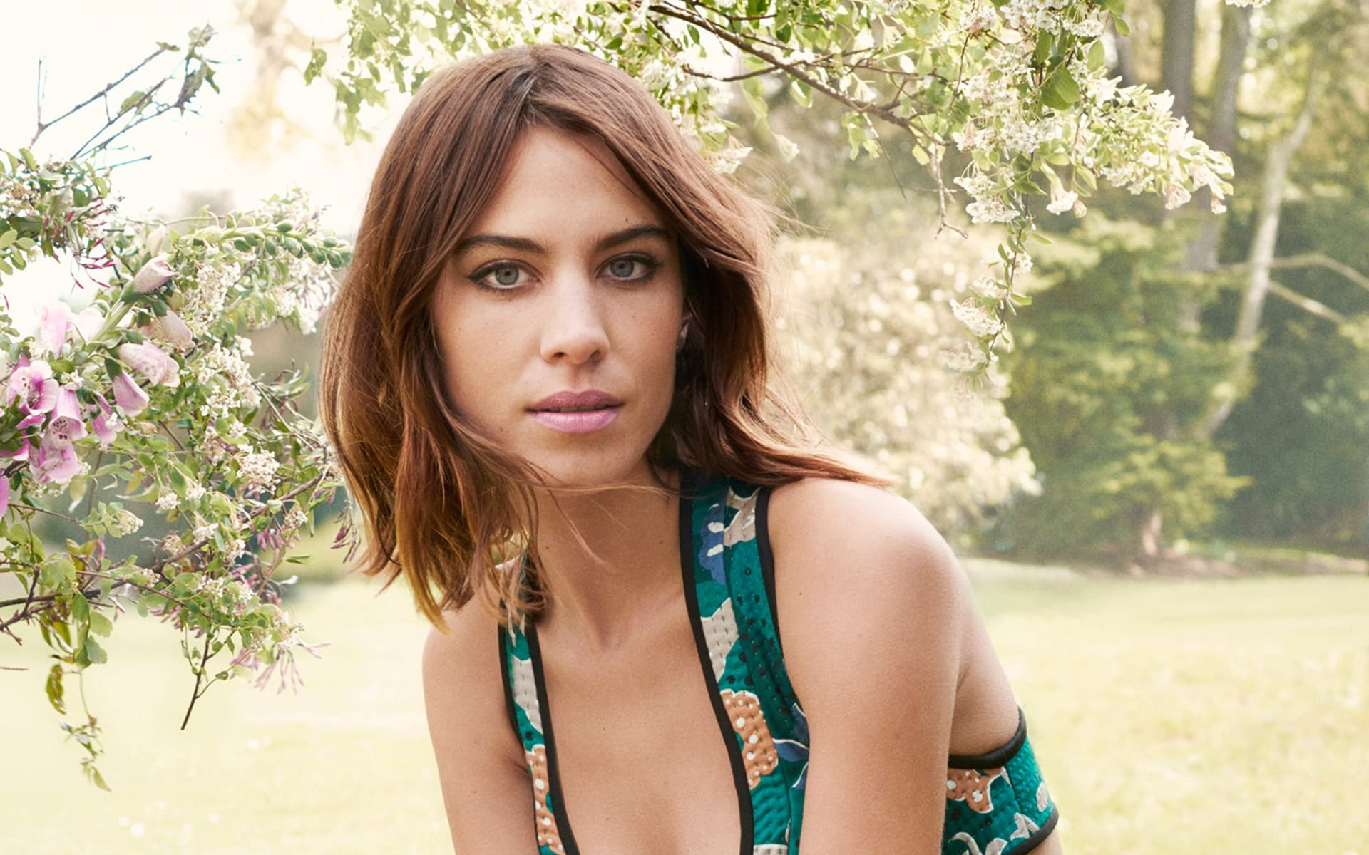 Alexa Chung background