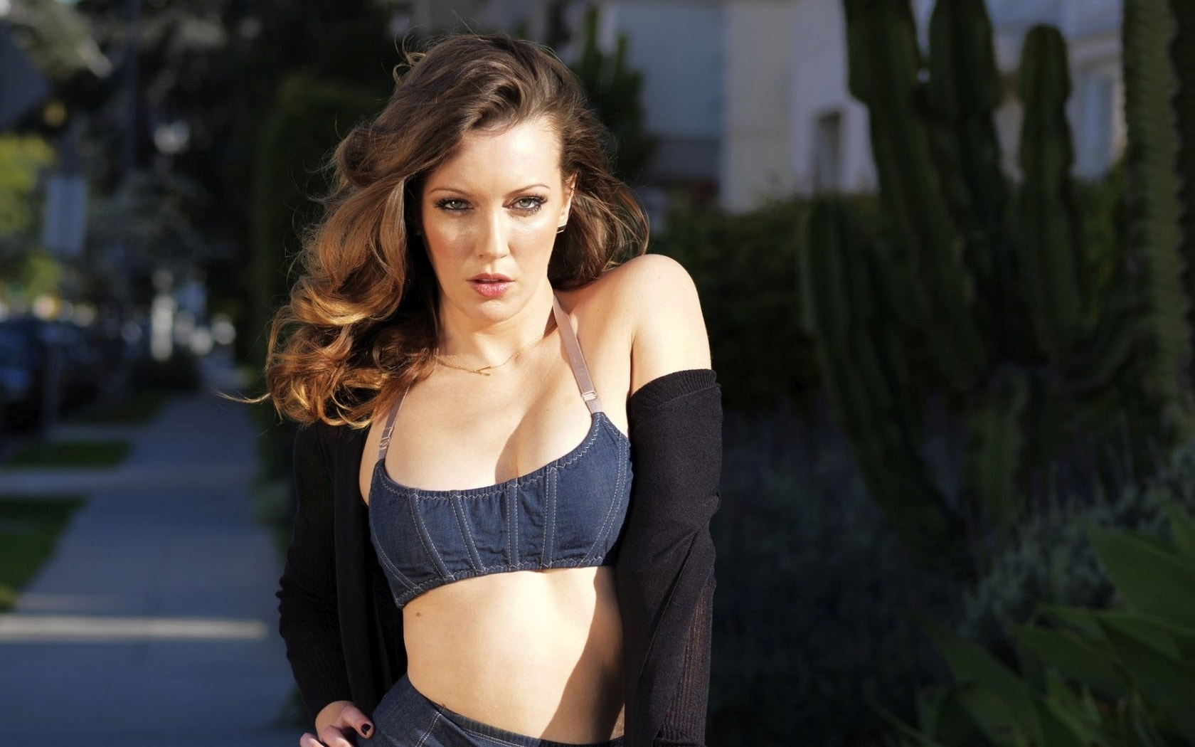 Katie Cassidy HD