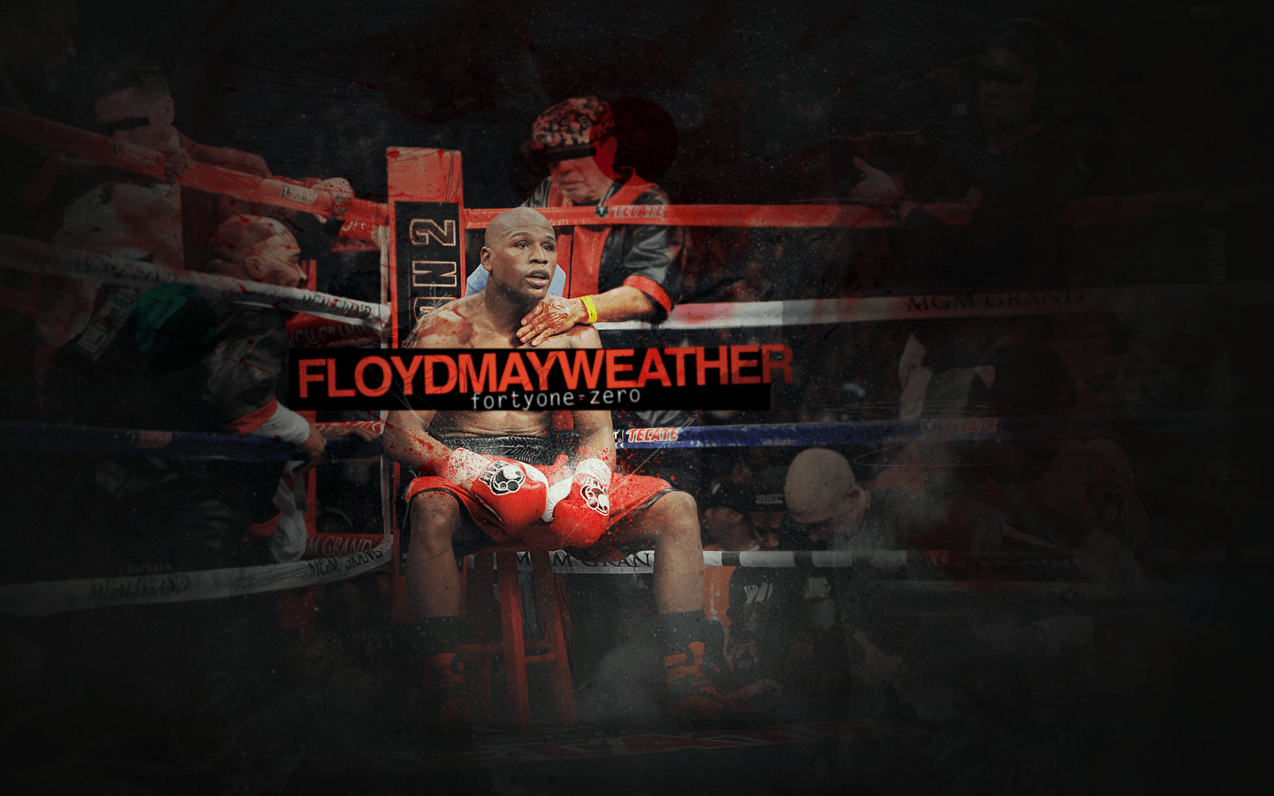 Floyd Mayweather, Jr. Wallpaper