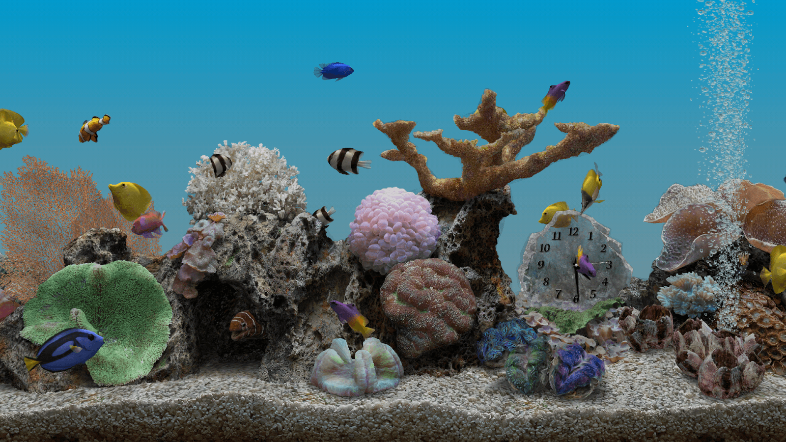 Marine Aquarium widescreen for desktop