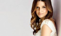 Sophia Bush HD pictures