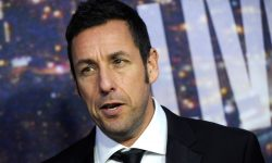 Adam Sandler HQ wallpapers