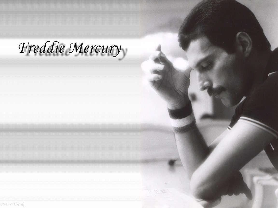 Freddie Mercury HD pictures