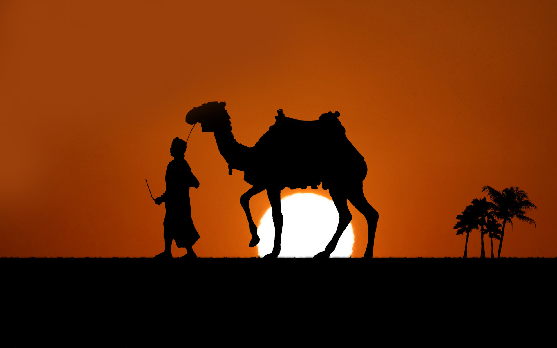 desert and camel wallpaper hd - photo #29