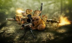 Tarsier widescreen