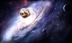 Sloth Wallpapers hd