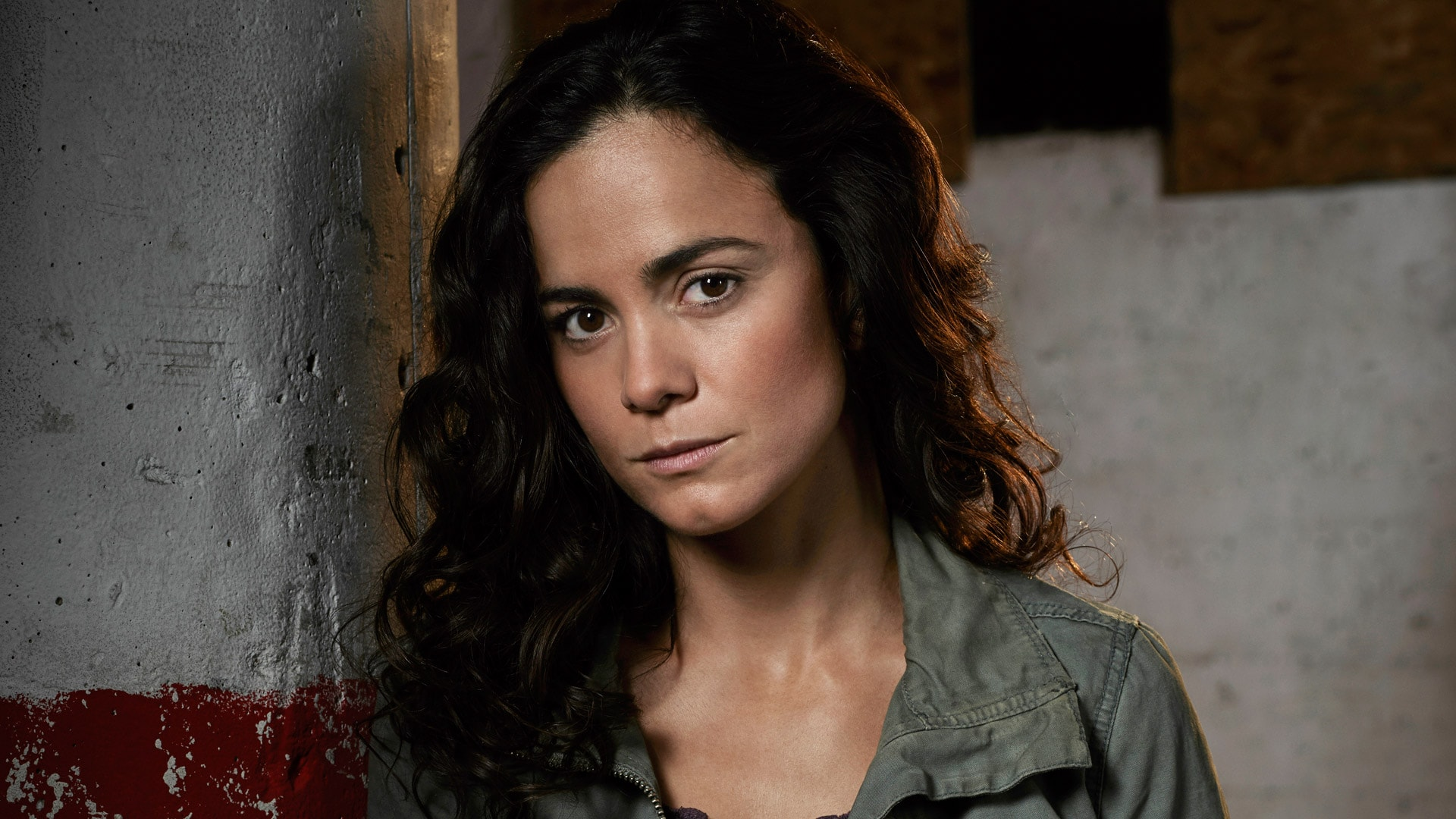Alice Braga Desktop wallpaper