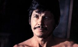 Charles Bronson Download