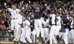 Detroit Tigers backgrounds