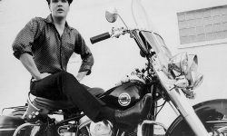 Elvis Presley Desktop wallpaper