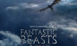 Fantastic Beasts and Where to Find Them widescreen for desktop