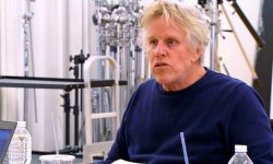 Gary Busey Download
