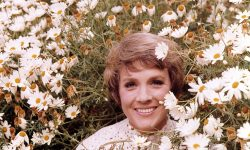 Julie Andrews Desktop wallpaper