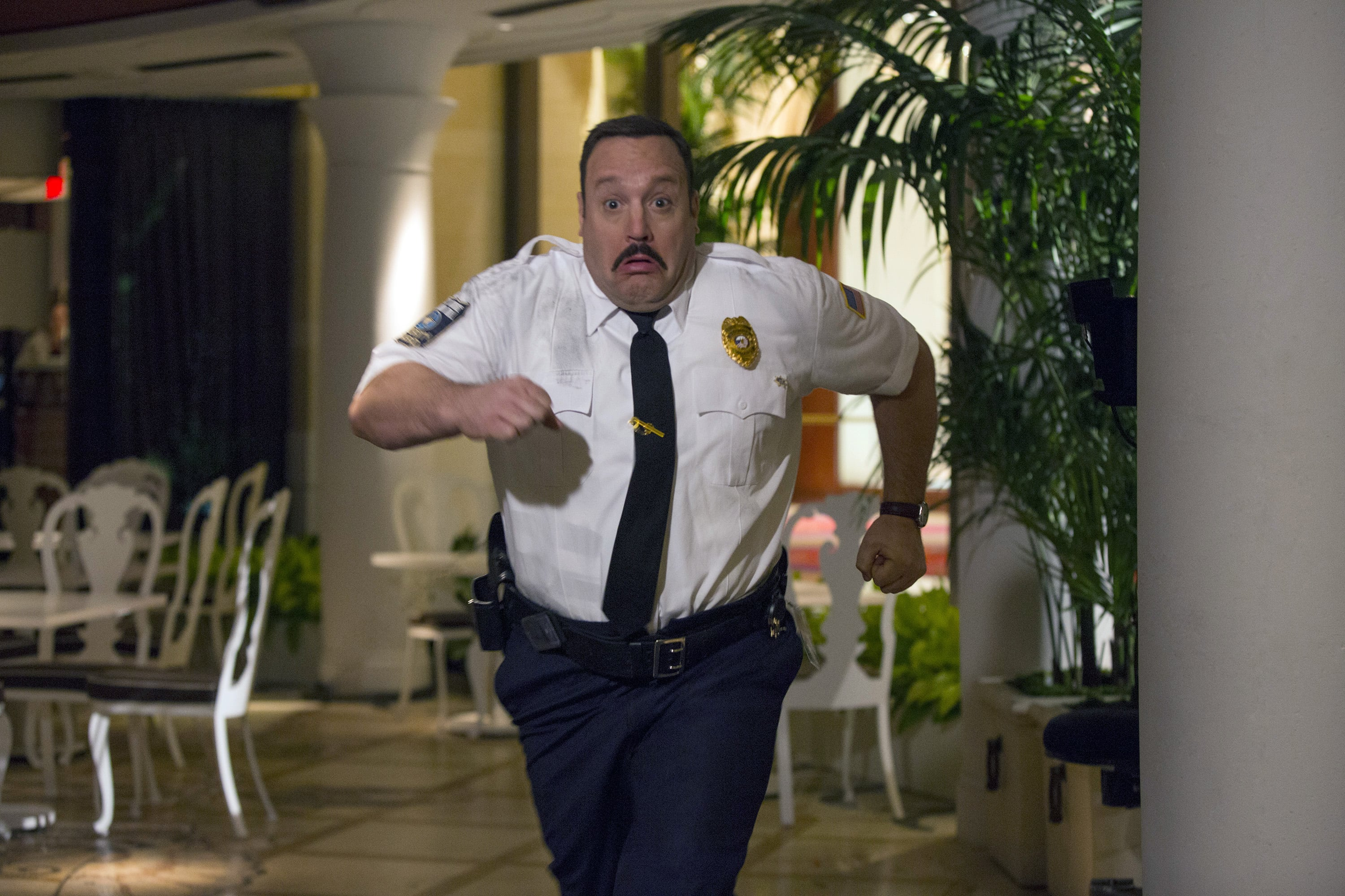 Kevin James Desktop wallpaper