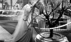 Mae West Desktop wallpaper
