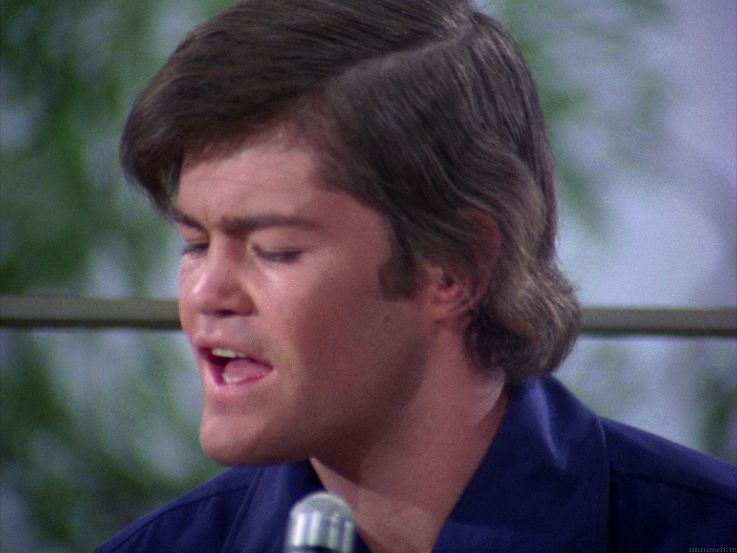 Micky Dolenz Desktop wallpaper